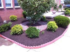 Bushes For Landscaping Evergreen Hedge Bushes For Landscaping In Your Garden