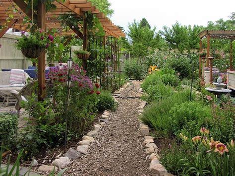 piante piccole da giardino piante ornamentali piante da giardino piante