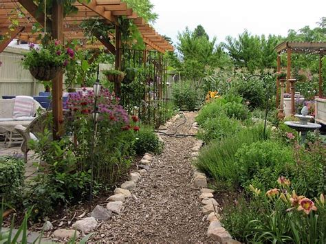 piante giardino piante ornamentali piante da giardino piante