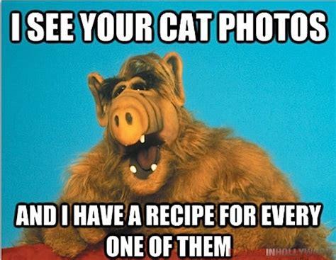Alf Meme - funny alf quotes quotesgram
