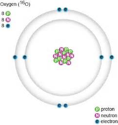 What Is The Number Of Protons For Oxygen Biology Protons Neutrons And Electrons Shmoop Biology
