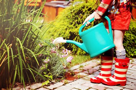 Garden Water Saver by Gardening Greatness 12 Water Savings Tips Earth911