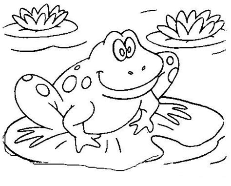 coloring page of a frog coloring page frogs google s 248 k frogs pinterest