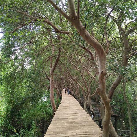 informasi wisata alam hutan mangrove pik jakarta  perlu diketahui wisatakaka