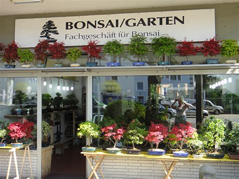 Bonsai Garten Hamburg by Bonsai Garten Wolf Tunnat