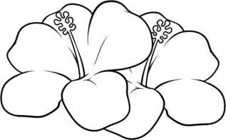 free coloring pages of hawaiian flowers hawaiian flower coloring pages coloring home