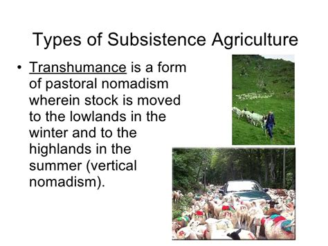 pattern of agriculture and types of forest in bangladesh chapter18agriculture