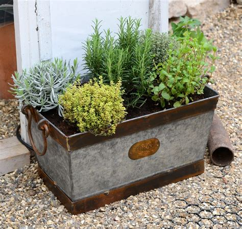 Metal Planters by Galvanised Metal Planters Images