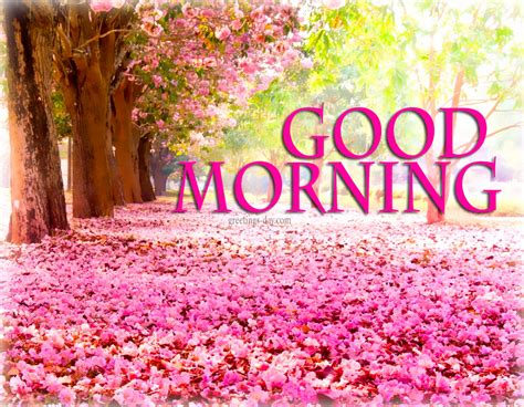 good morning greetings flashgood morning e cards good good morning best pictures animated pics and quotes