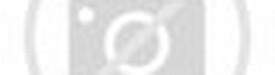 ... permainan bola voli gambar serta ukuran lapangan permainan bola voli
