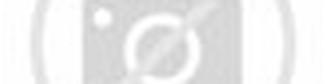 ... bola voli gambar serta ukuran lapangan permainan bola voli olahraga