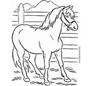 Coloring Book Pages Of Horses  011