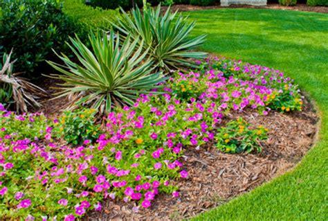 flowers for garden beds flower garden bed ideas 2016 photos gardening design