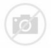 Design Rumah Sederhana