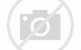 wallpaper pemandangan alam kartun