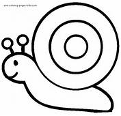 Snail Coloring Pages Color Plate Sheetprintable