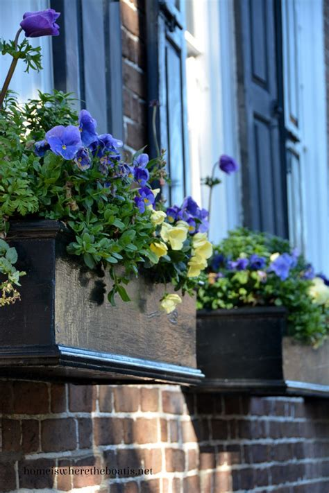 balcony window boxes 1128 best images about balcony container gardening on
