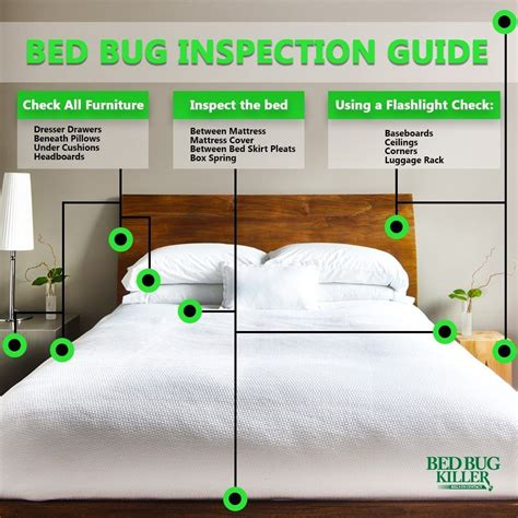 check  bed bugs   hotel room   public