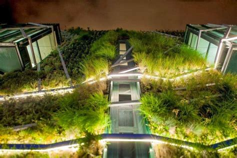 Vertikaler Garten Selber Bauen 945 by Greenroofs Projects Europa Congress Palace