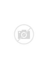 Coloriage Squelette Sucre Nature