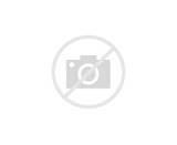 Coloriage Skylanders : Skylanders Giants - Tree Rex 1