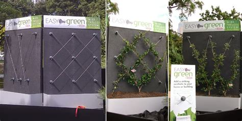 vertical garden simple cable structures can be the most
