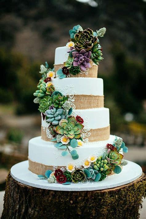 Succulent cake   Bridal Inspiration in 2019   Succulent