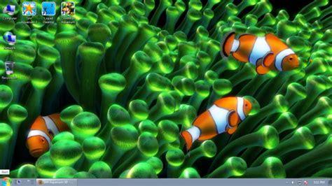 Vlc Live Wallpaper by Clownfish Aquarium Live Wallpaper Screensaver Free