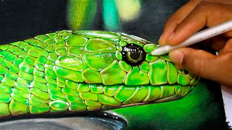 Time To Be A Real Snake by How To Draw A Realistic Snake Time Lapse