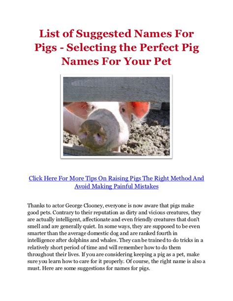 list of suggested names for pigs selecting the perfect