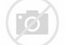 Gambar Masjid Indah Dan Termegah Di Dunia