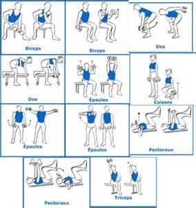 programme de muscu musculation forum forme sport