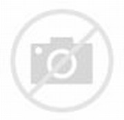Orchid Coloring Pages