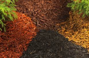 10 types of garden mulch choose the right one for your landscape the self sufficient living