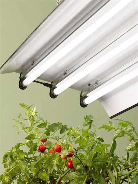 plant light high intensity grow light fixture with three t5 bulbs