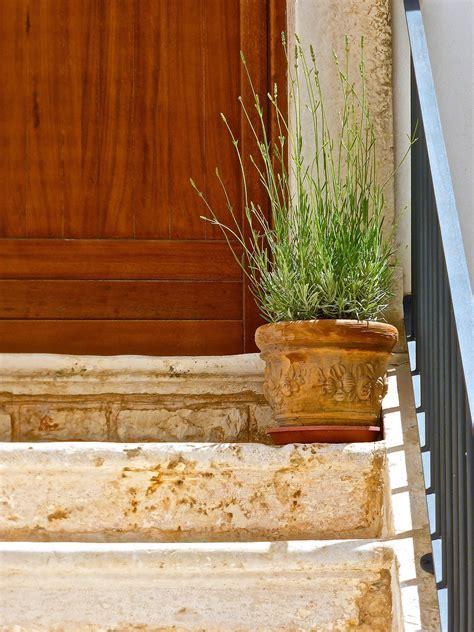 Fotos gratis : planta, piso, pared, pasos, decoración