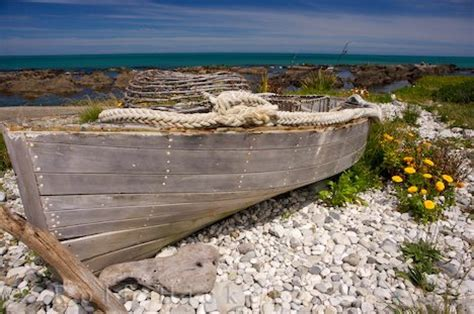 free boats nz free wallpaper background wooden boat kaikoura coast new