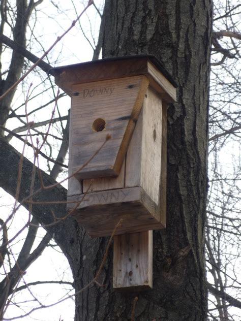 bird house vacancies south burlington vt bird nest box
