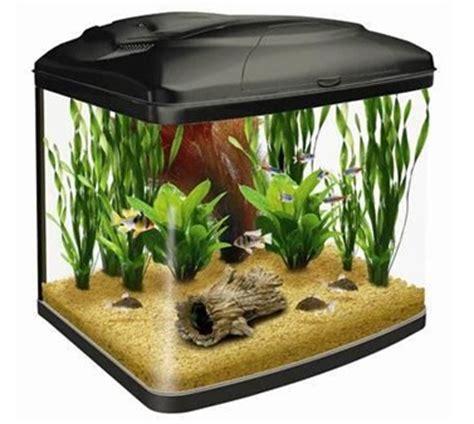 aquarium design kolkata imported molded aquarium in kolkata west bengal india