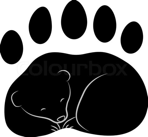 trace of the bear s paw with claws vector stock vector
