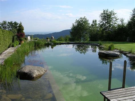 natural swimming pool pin by neddy newitt on natural pools and ponds pinterest