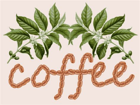 design image clipart coffee design