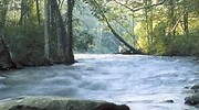 national center for recreation conservation rivers wild and scenic