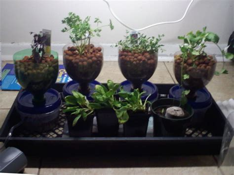compact cheap  expandable hydroponics system