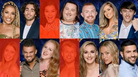 celebrity housemates vote big brother poll who s your favourite housemate vote