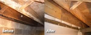 Diy Black Mold Removal » Ideas Home Design