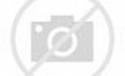 2013 Ninja 300 Review