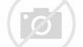 Ukuran Lapangan Bulu Tangkis Badminton