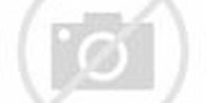 Kyuubi Naruto vs Pain