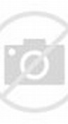 Paris Lucu Wallpaper Animasi 2.0